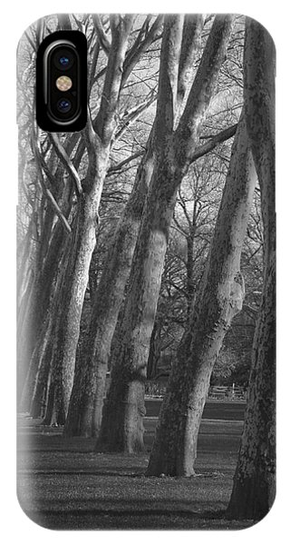 Row Trees IPhone Case