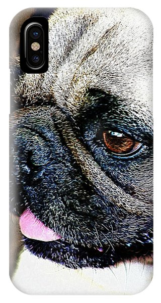 Roxy The Pug IPhone Case
