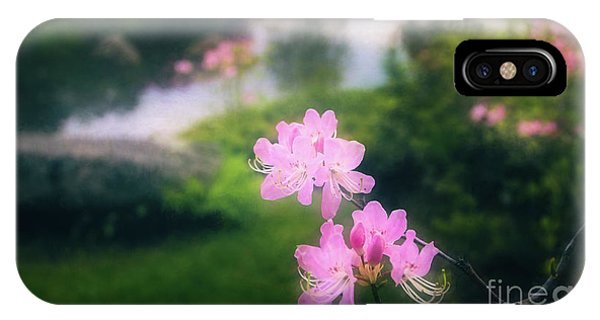 Royal Azaleas At Asticou Azalea Garden IPhone Case