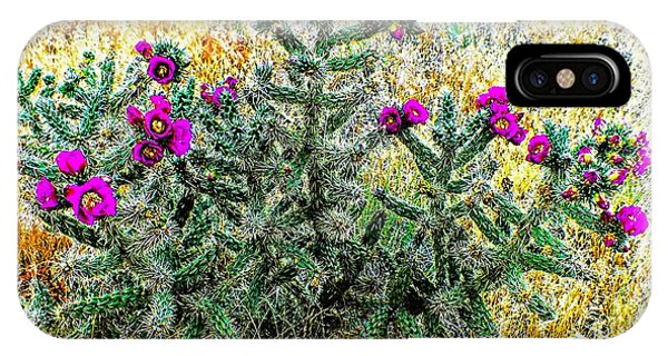 Royal Gorge Cactus With Flowers IPhone Case