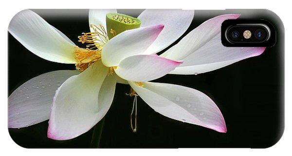 Royal Lotus IPhone Case