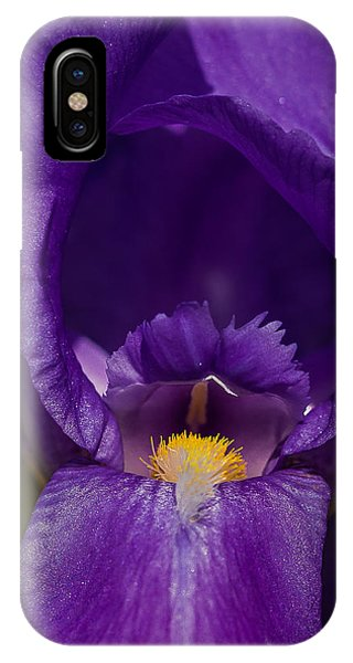Gold With Royal Purple Robes IPhone Case