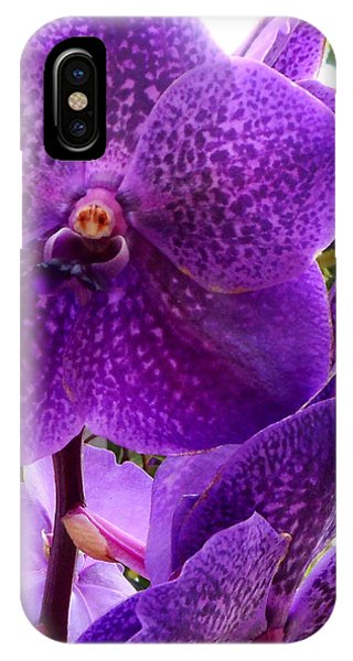 Royal Purple Orchids IPhone Case