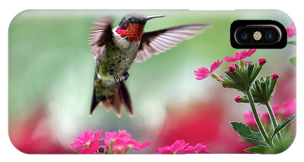 Bird iPhone Case - Ruby Garden Jewel by Christina Rollo