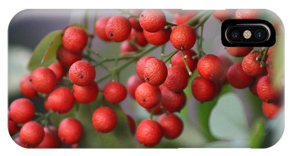 Ruby Red Berries IPhone Case