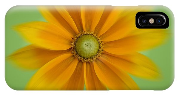 Rudbeckia Blossom Irish Eyes - Square IPhone Case