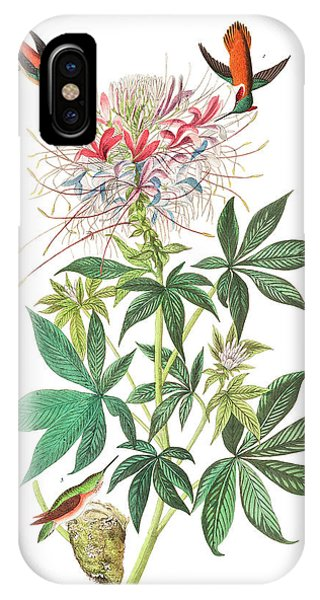 Humming Bird iPhone Case - Ruff-necked Humming-bird by John James Audubon