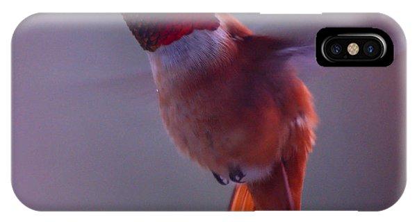 Rufus Hummingbird IPhone Case