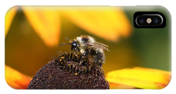 Rumble Bee IPhone Case
