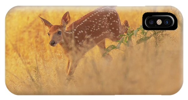 IPhone Case featuring the photograph Running In Sunlight by John De Bord