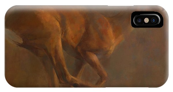 Running Roe IPhone Case