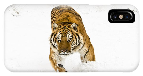 Running Tiger IPhone Case