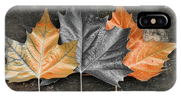 Equal iPhone Case - Rusted Leaves by Mihaela Pater