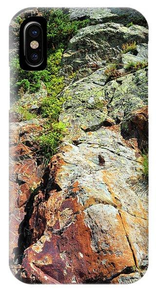 Rusty Rock Face IPhone Case