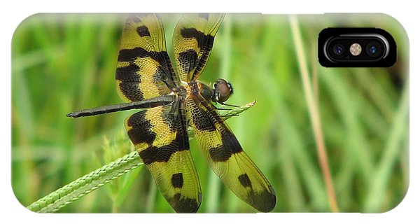 Ryothemis Dragonfly IPhone Case