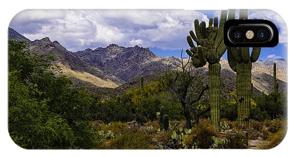 IPhone Case featuring the photograph Sabino Canyon No4 by Mark Myhaver