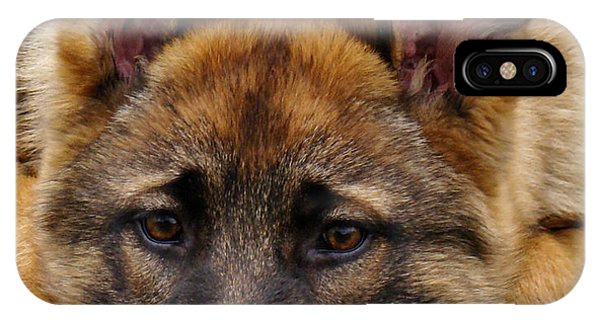 Sable German Shepherd Puppy IPhone Case