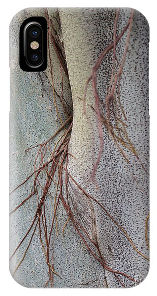 Sacred Bodhi Tree Detail With Red Creeper Vines IPhone Case