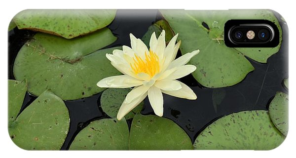 Sacred Lotus IPhone Case