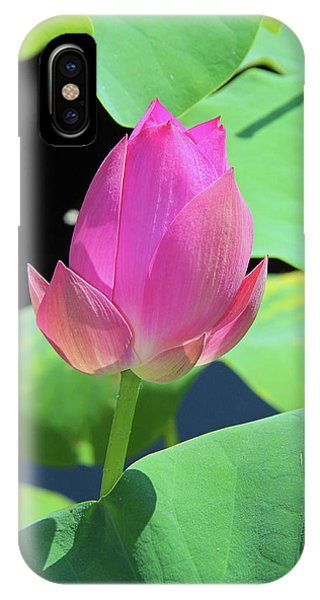 Sacred Pink IPhone Case