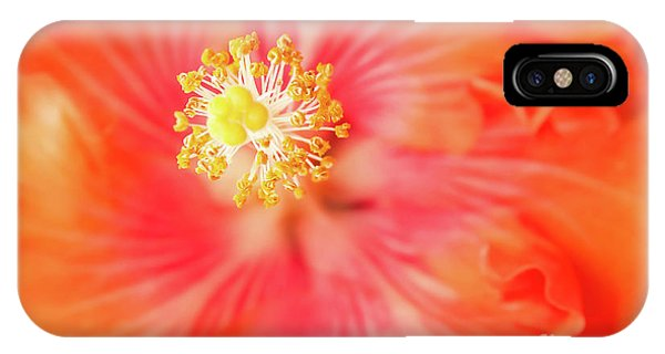 Sacred Song IPhone Case