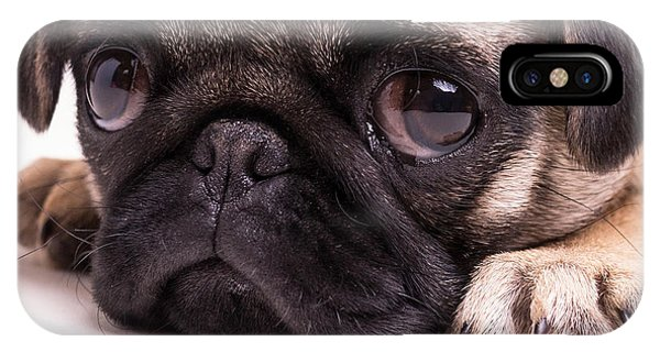 Pug iPhone X Case - Sad Sack - Pug Puppy by Edward Fielding