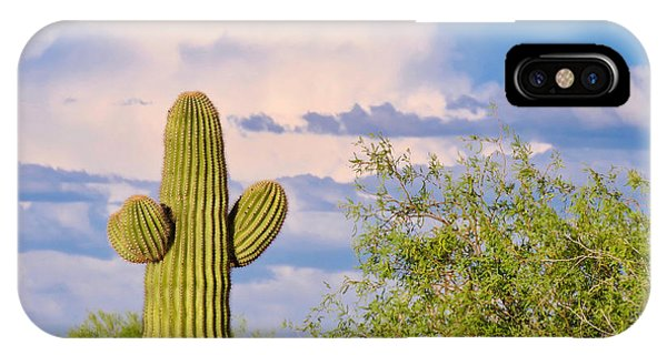 Saguaro And Mesquite In Monsoon Season IPhone Case
