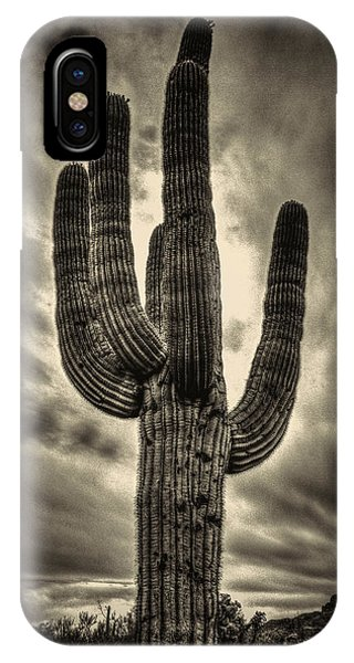 Saguaro And Storm Clouds IPhone Case