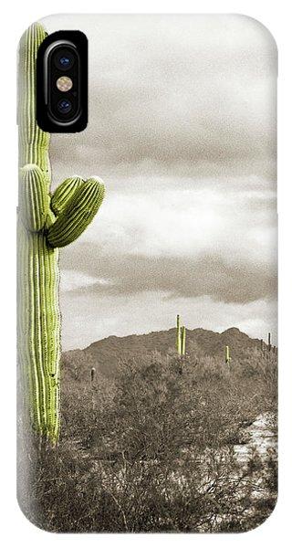 Saguaro Cactus IPhone Case