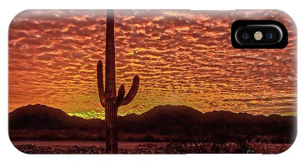 Saguaro Cactus  Sunrise IPhone Case
