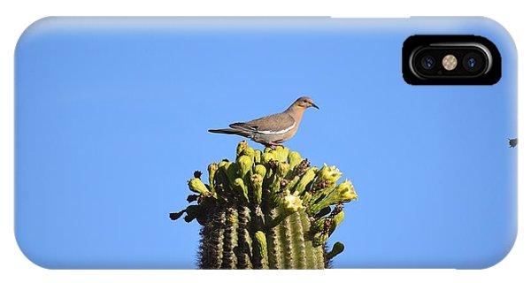 Saguaro Dove 1 IPhone Case