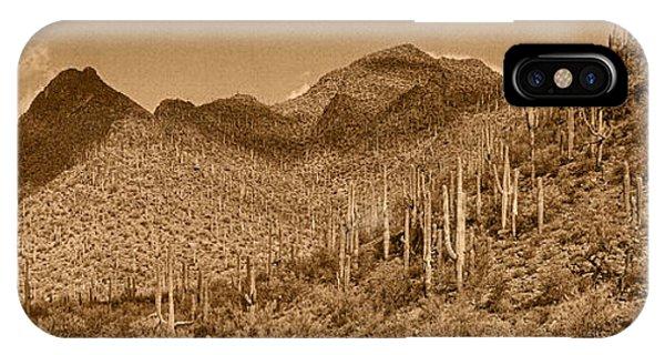 Saguaro Hillsides Tint  IPhone Case