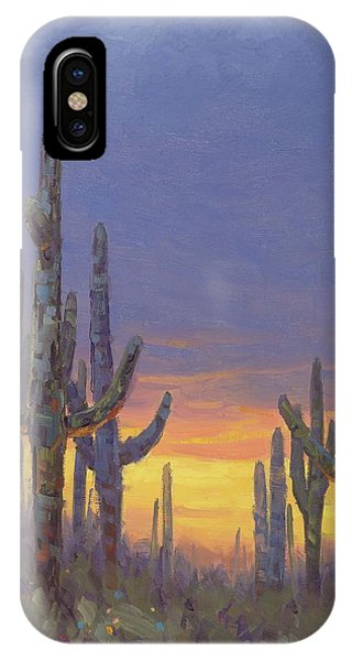 Canyon iPhone Case - Saguaro Mosaic by Cody DeLong