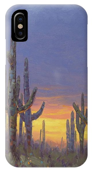 Grand Canyon iPhone Case - Saguaro Mosaic by Cody DeLong