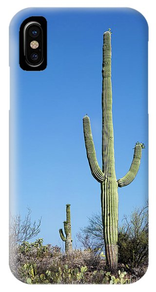 IPhone Case featuring the photograph Saguaro National Park Arizona by Steven Frame