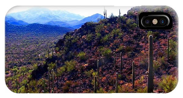 Saguaro National Park Winter 2010 IPhone Case
