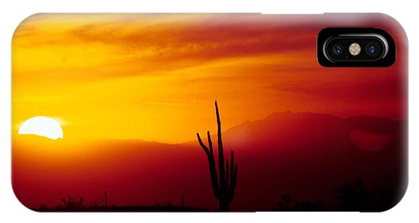Saguaro Sunset IPhone Case