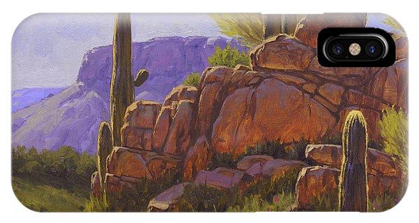 Cactus iPhone Case - Saguaro Sunshine by Cody DeLong