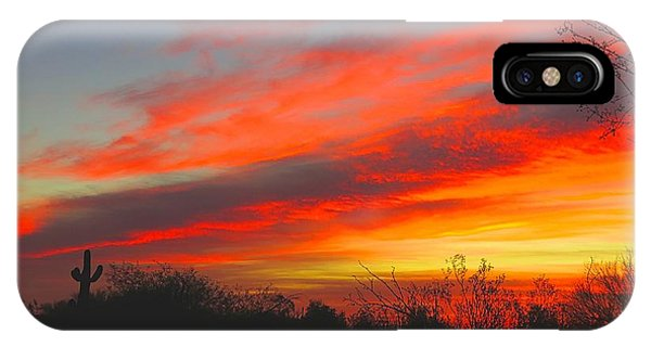 Saguaro Winter Sunrise IPhone Case