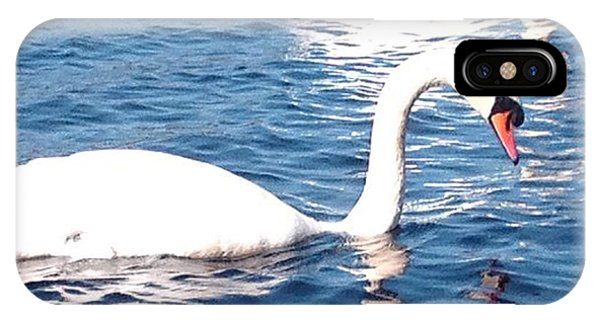 Teal Swan iPhone Case - Sailing Right Beside by Dawn Richerson