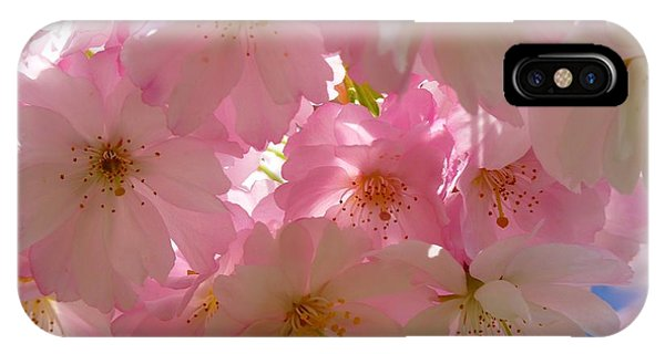Sakura - Japanese Cherry Blossom IPhone Case
