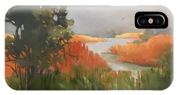 IPhone Case featuring the painting Salmon Creek by Helen Harris