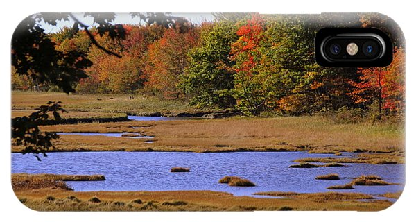 Salt Marsh River IPhone Case