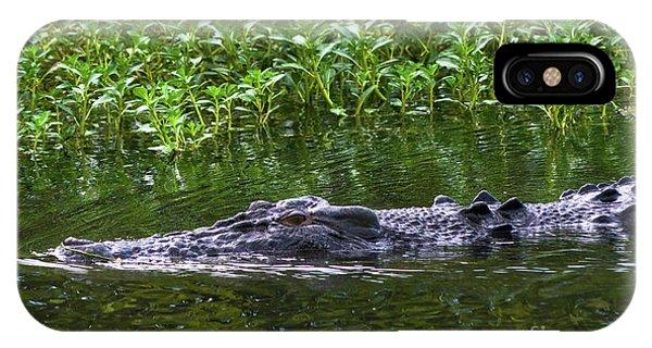 Saltwater Crocodile In Kakadu IPhone Case