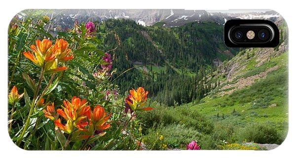 San Juans Indian Paintbrush Landscape IPhone Case