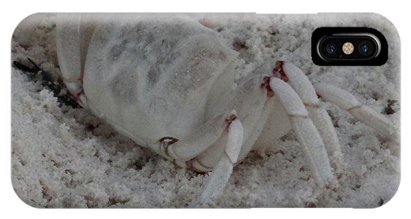 Exploramum iPhone Case - Sand Crab by Exploramum Exploramum
