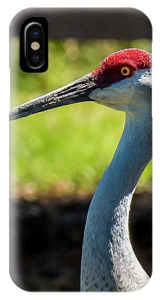 Sand Hill Crane IPhone Case