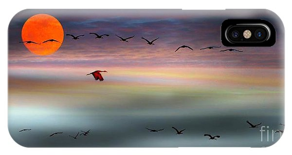 Sand Hill Cranes At Moonrise IPhone Case