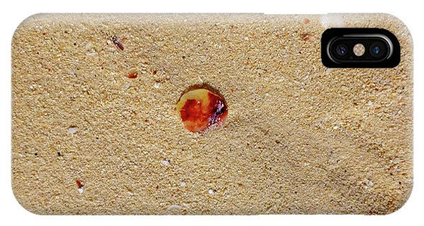 IPhone Case featuring the photograph Sand Shell Art by Francesca Mackenney