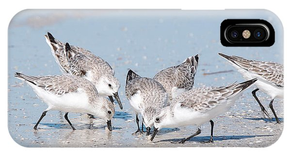 IPhone Case featuring the photograph Sanderlings by Nature and Wildlife Photography